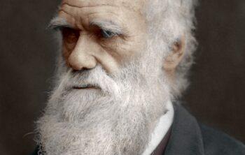 Curiosidades de Charles Darwin