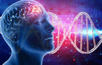 Curiosidades de la genética
